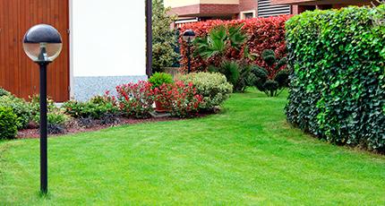 limpieza jardines - Servicios de Limpieza